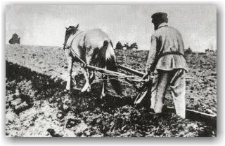 На пашне. Ряжский уезд. Весна 1914 года